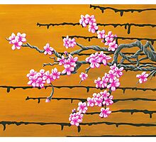 October Cherry Blossoms Photographic Print