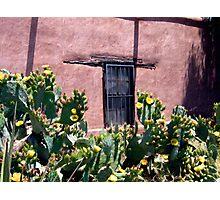 Mesilla Bouquet Photographic Print