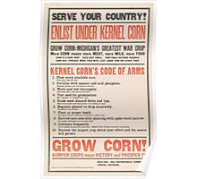 United States Department of Agriculture Poster 0250 Serve Your Country Enlist Under Kernel Corn Poster