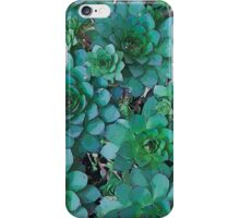 Hens And Chicks - Digital Art  iPhone Case/Skin