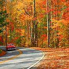 LITTLE RIVER ROAD,AUTUMN by Chuck Wickham
