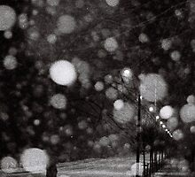 Street Lights and Snow Flakes by Eccie