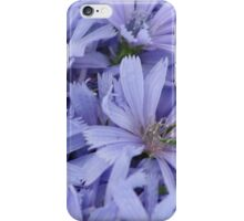 Periwinkle chicory iPhone Case/Skin