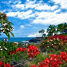View from Keahou, Kona by Kurt  Van Wagner