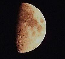 Half Moon by Rachel Williams