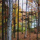Lake Dressed in Autumn by Ginger  Barritt