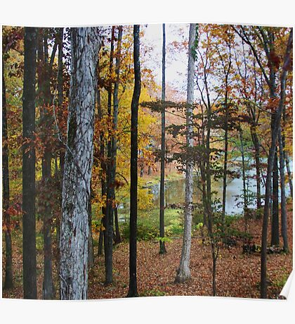 Lake Dressed in Autumn Poster