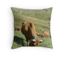 Milk Cows, Vallee des Glaciers Throw Pillow
