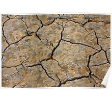Dry Cracked Lake Bed Poster