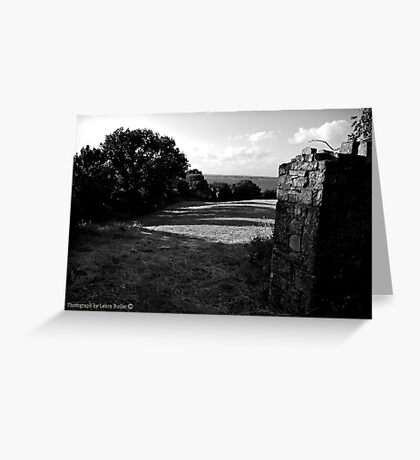 Fields of Sunlight - County Tipperary. Greeting Card