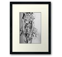 Untitled/Unmarked Framed Print