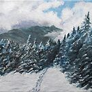 Stormy day in the Mountains by Gary Adams
