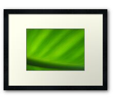 Greener than Green  Framed Print