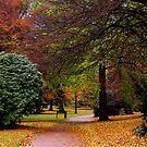An Autumns Day by Don Alexander Lumsden (Echo7)