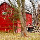 Old red barn by carlosramos
