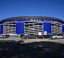 Shea Stadium by Frank Romeo