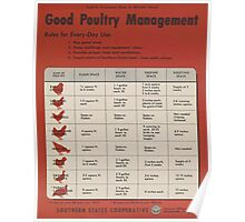 United States Department of Agriculture Poster 0315 Good Poultry management Poster
