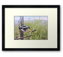 """True Air Brakes"" Framed Print"