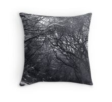City Park Winter Throw Pillow