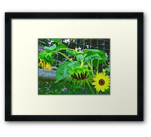Yesterday, Today, and Tomorrow Framed Print