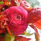 Pink - for Fall! by Barbara Wyeth