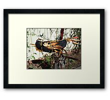 Disco Crow - returning to place of bith Framed Print