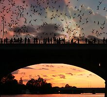 The Bat Bridge by John Edward Barrera
