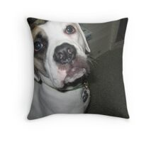 Here's Looking At You Kid! Throw Pillow