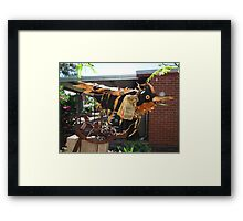 Disco crow - in garden Framed Print