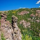 Rock formations in New Mexico by Ann Reece