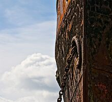 Bow of the Port Lairge, Saltmills, County Wexford, Ireland by Andrew Jones