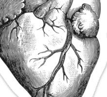Love Grey's Anatomy Sticker