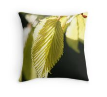 Lifelines Throw Pillow