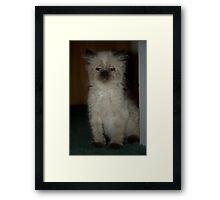 hello i'm deli Framed Print