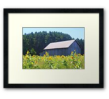 Sunflowers Along 10 Framed Print