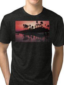 Ordinary Day Tri-blend T-Shirt
