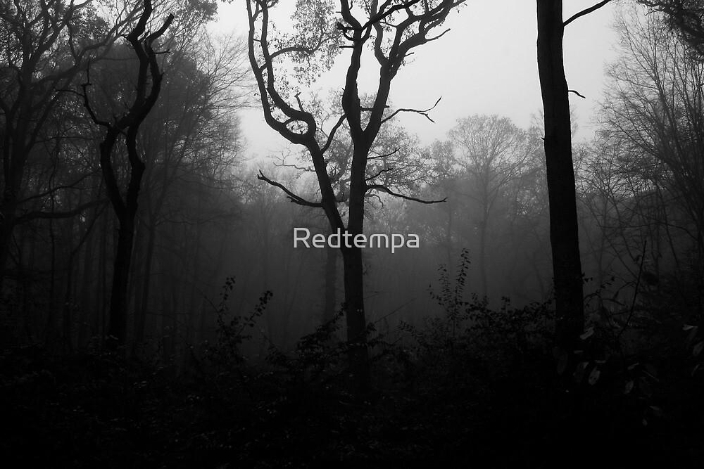 ELDERS II by Redtempa