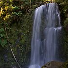 Beauchamp Falls I by liza1880