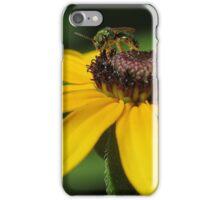 Green Metalic Bee on Blackeyed Susan iPhone Case/Skin