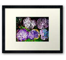 Novembers Garden 7 - Monoprint Framed Print