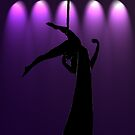 the Aerialist by Lisa Knechtel