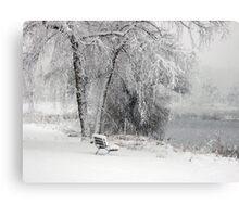 Wintery Watch Canvas Print
