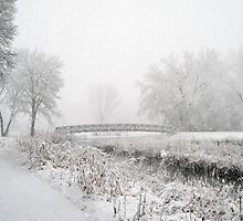 Snowing Bridge Scene 1 by Robin Clifton