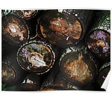 Logs Poster
