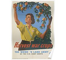 United States Department of Agriculture Poster 0146 Harvest War Crops Women's Land Army Poster