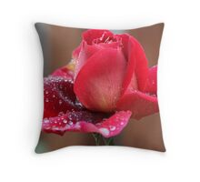 Pretty Red Rose with Raindrops Throw Pillow