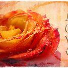 Love by Olga