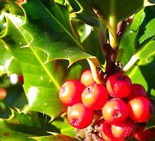 Berry Nice by Browneyedgirl78