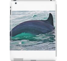 Green Water Dolphin iPad Case/Skin