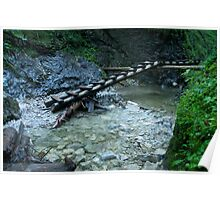 Ladder bridge - Slovak Paradise Poster